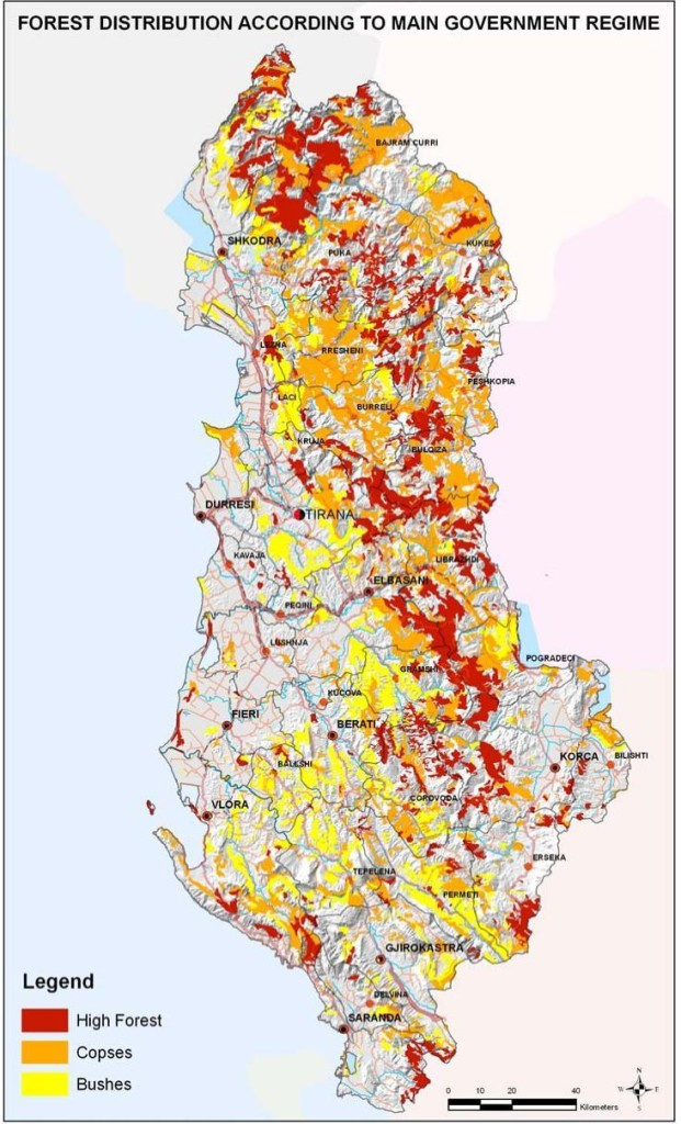 Figure 6 Territorial distributions of forest according to main government regime