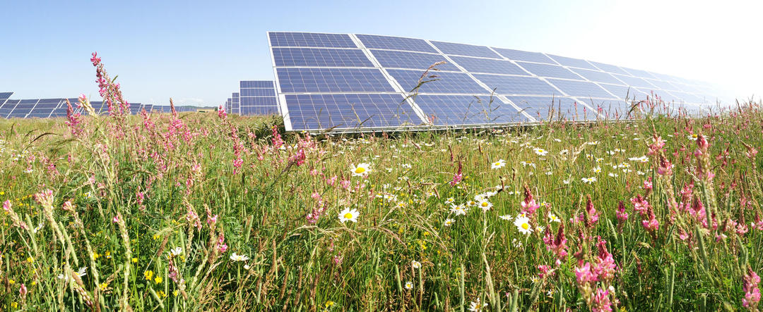 Fier and Lushnja, the main destination for photovoltaic parks in Albania