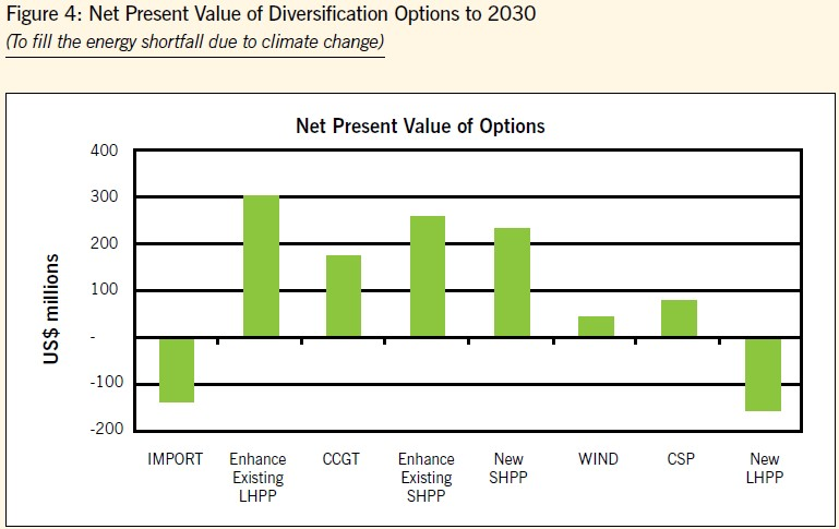 Figure 4: Net Present Value of Diversification Options to 2030